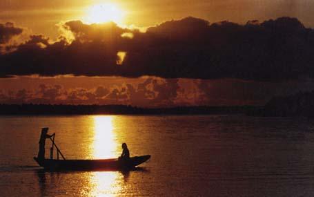 14 mẫu Mở bài tác phẩm Người lái đò sông Đà hay nhất