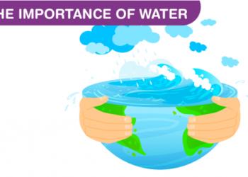 Tầm quan trọng của nước